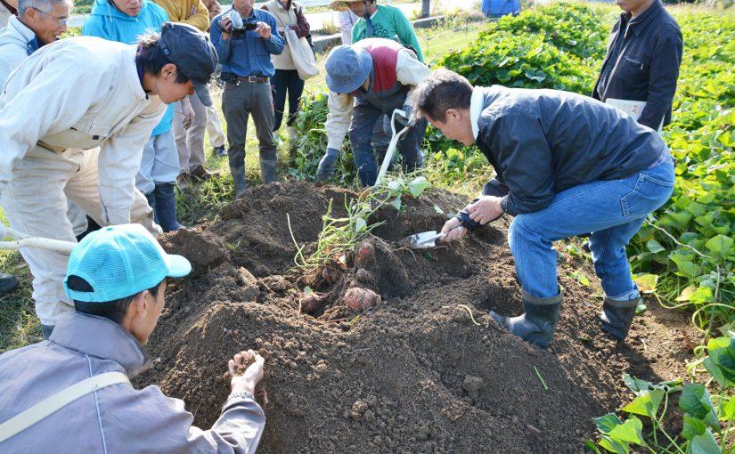 オーガニックな里山づくり、土づくりから考える農業