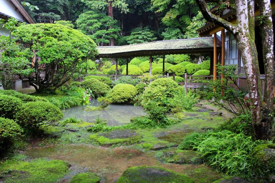 見事な調和!「光久寺の茶庭」