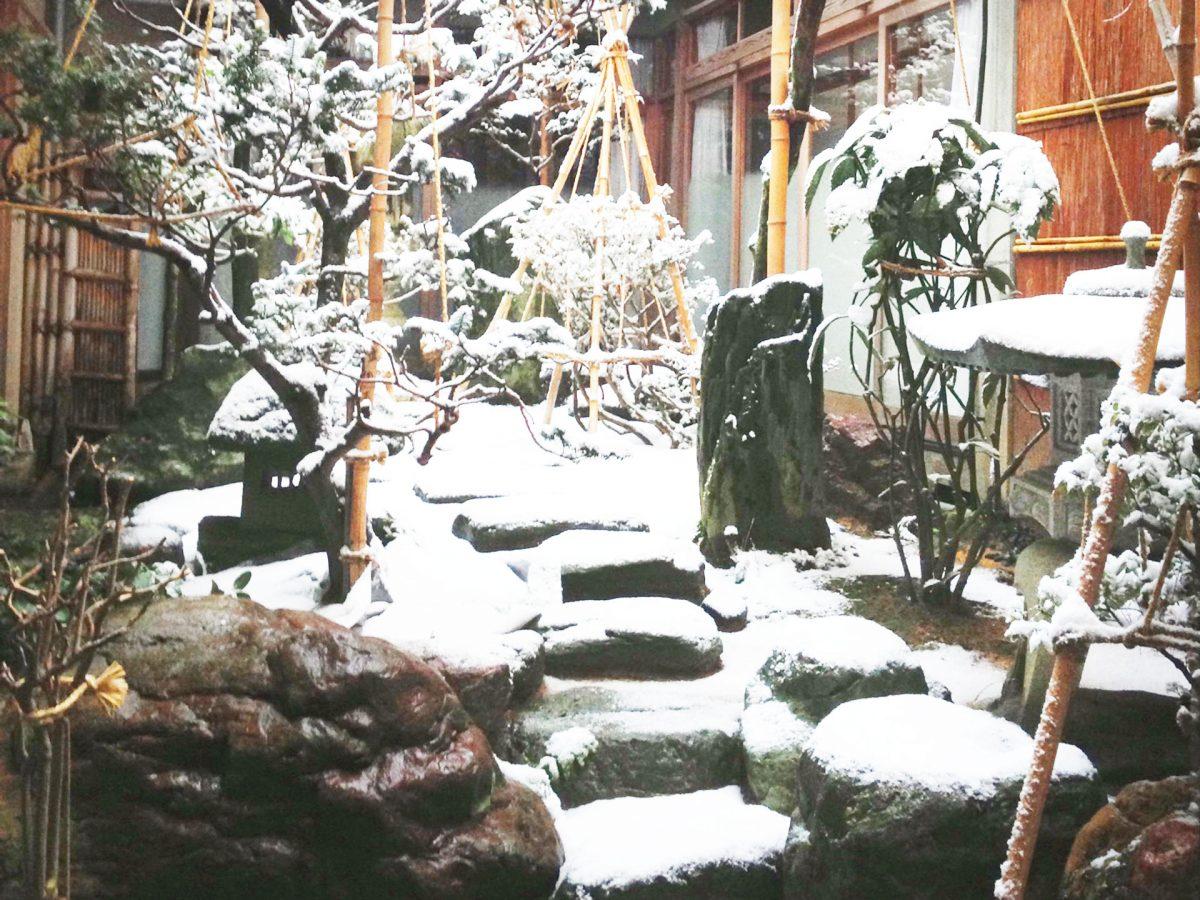 家の中の小さな庭。あなたならどう使う?